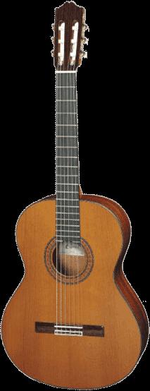 guitare cuenca S40